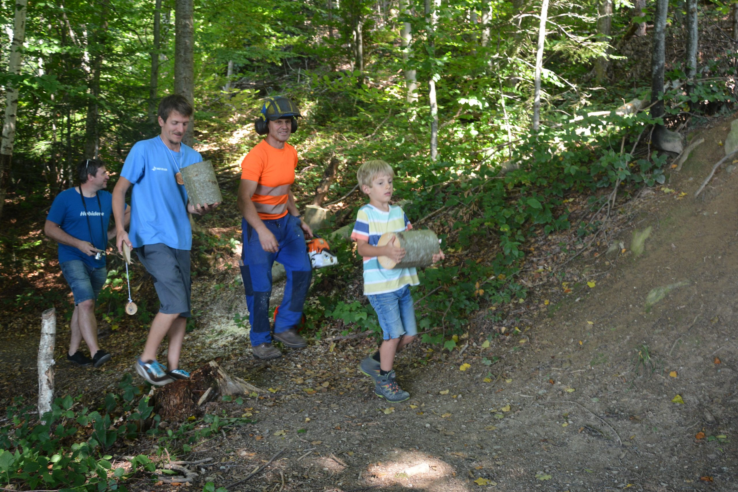 Schnifis: Schaffa im Wald